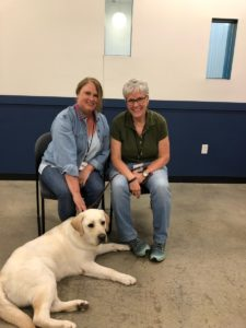 Levi is first Facility Dog for St. Louis County Prosecuting Attorney's Office